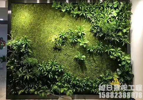 四川墙体绿植墙