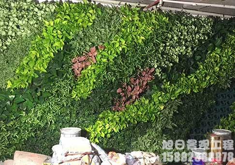 仿真植物绿植墙