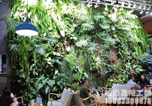 植物绿植墙