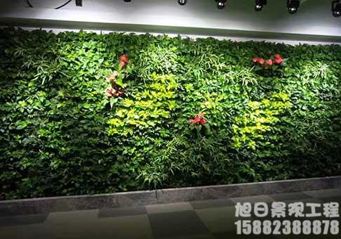 造型绿植墙