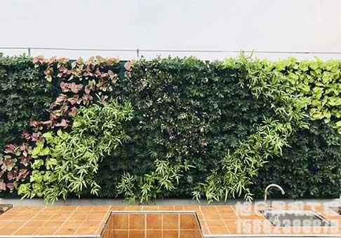 景观造型绿植墙