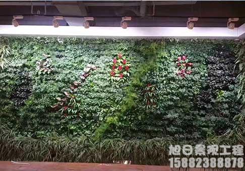 景观绿植墙