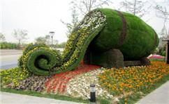 四川造型生态绿雕