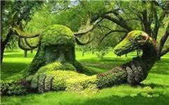 成都仿真绿植墙