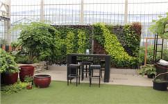 仿真植物墙打造美好的室内环境