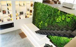 成都立体垂直绿化