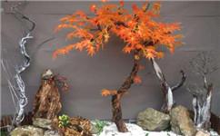 仿真树、假山在现代园林造景中的作用与意义