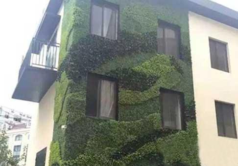 绿化景观绿植墙