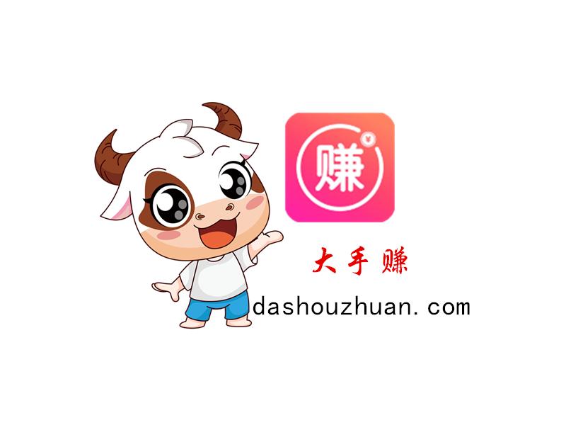 大手赚-dashouzhuan.com