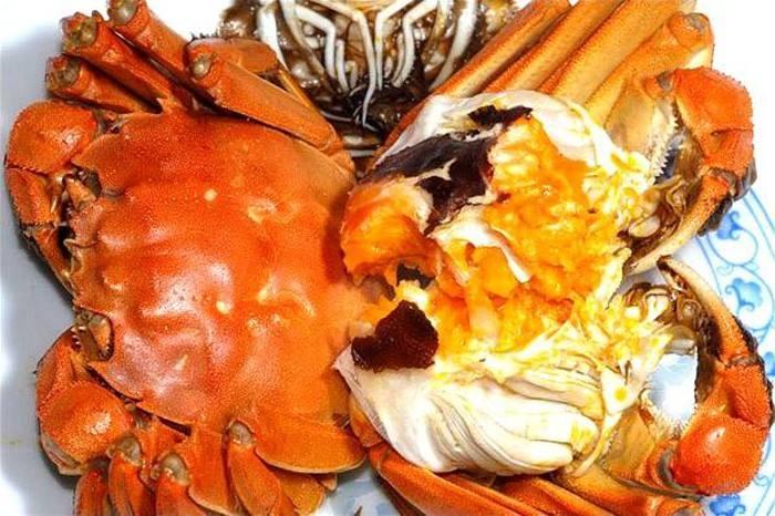 襄陽陽澄湖大閘蟹不能和什么一起吃