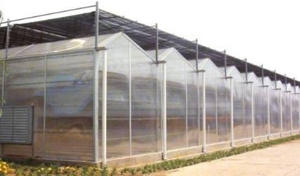 冬季连栋大棚建设中应如何加强保温措施
