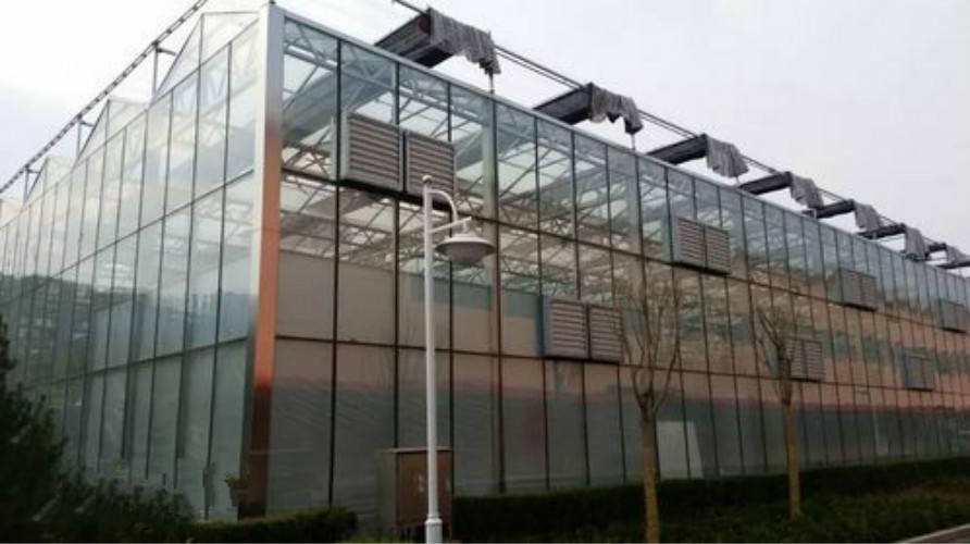 上海智能连栋温室