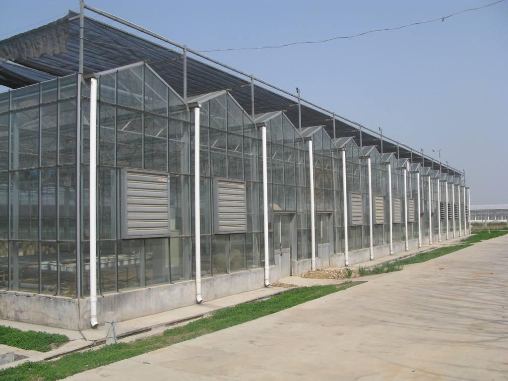 杭州智能连栋温室