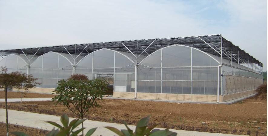 广州温室大棚建设