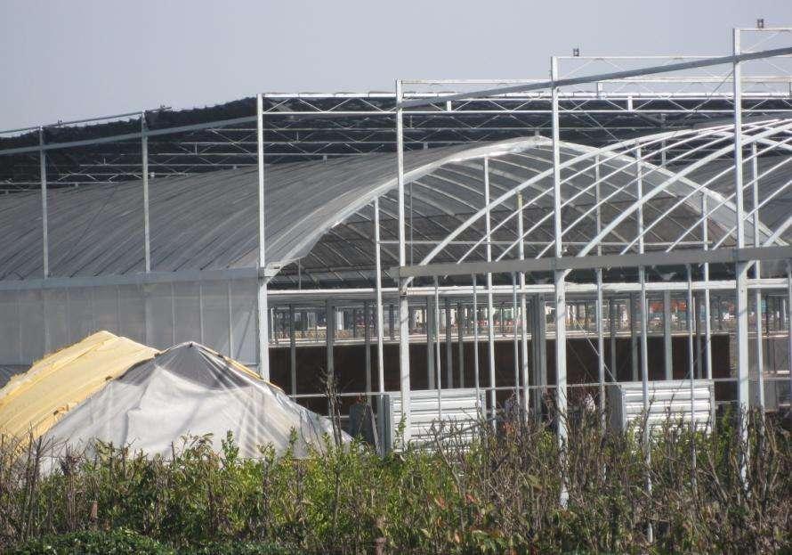 杭州温室大棚建设