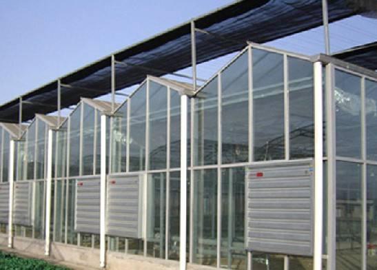武汉玻璃连栋温室大棚