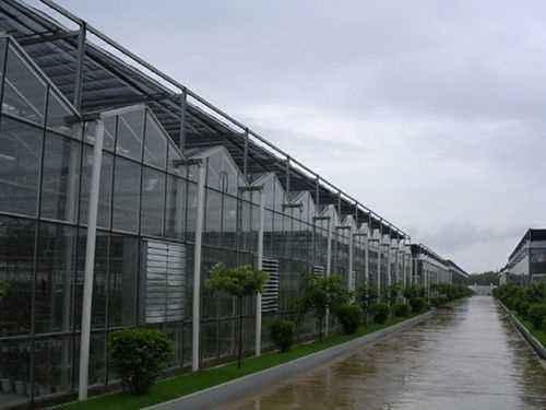重庆玻璃连栋温室大棚