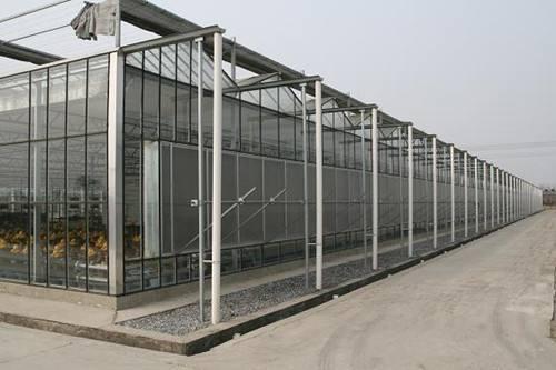 苏州玻璃连栋温室大棚