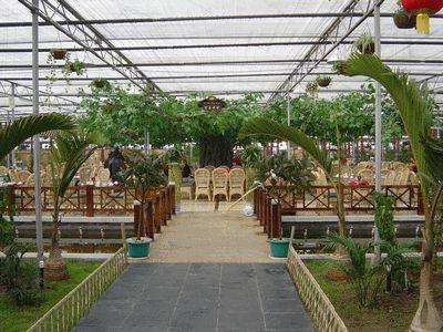 深圳生态玻璃温室大棚