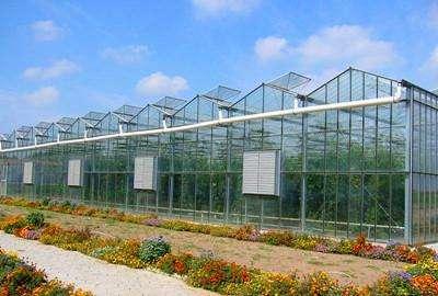 连栋玻璃温室设有主体钢架,究竟有何用处?