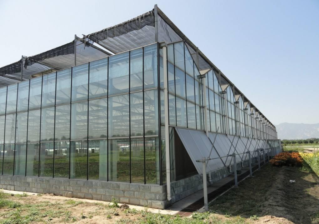青島/濰坊大家知道玻璃連棟溫室如何降濕嗎?