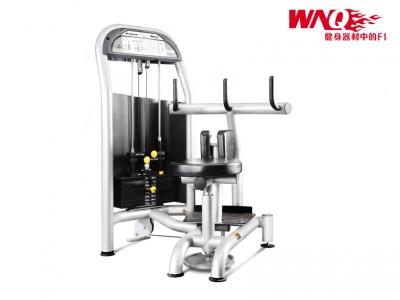 F1-5009 豪華商用扭腰訓練器