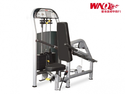 F1-5013 豪華商用下壓訓練器