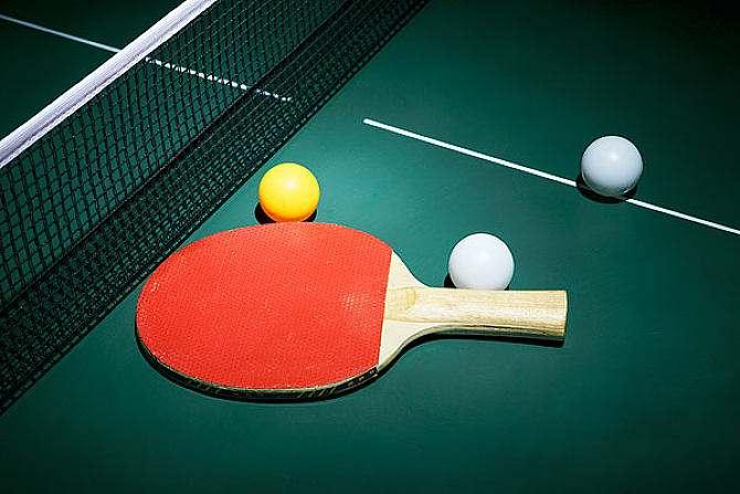 室內乒乓球臺的的結構特點以及相關說明