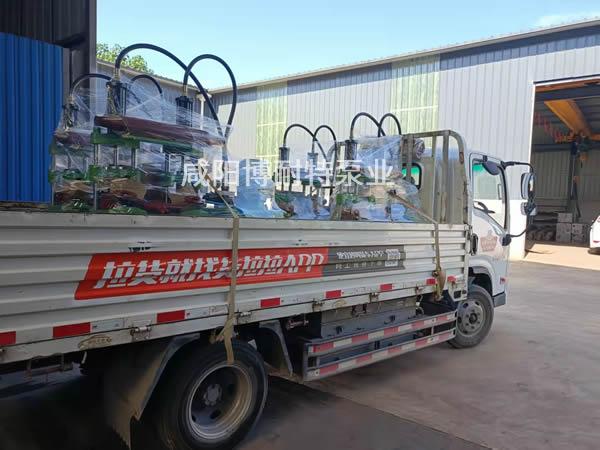 浙江区域的用户已安排|我厂柱塞泥浆泵发货现场