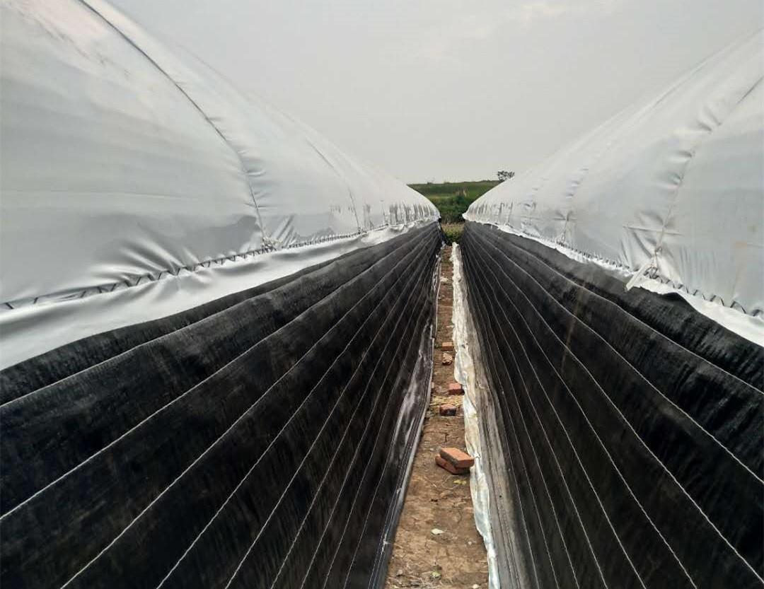 养殖大棚建造