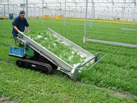 履带式蔬菜收割机