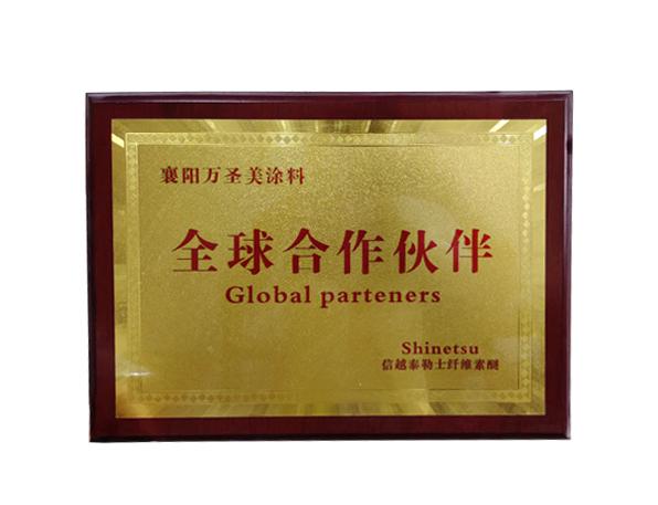 全球合作伙伴