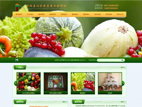 泾阳县润兴蔬菜合作社