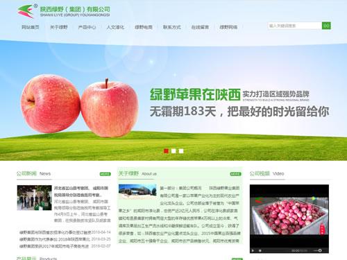 咸阳网站开发
