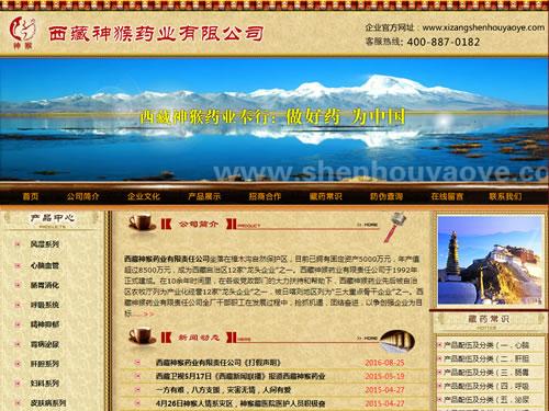 咸阳药业公司网站建设