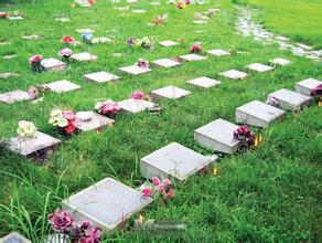 應理性看待綠色殯葬改革中出現的問題