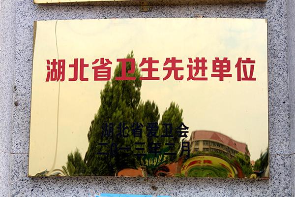 襄樊小升初湖北省卫生先进单位