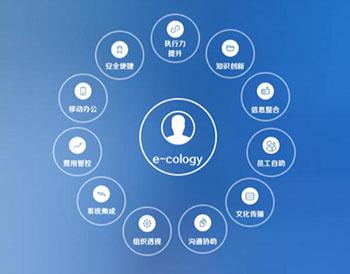 泛微e-cology