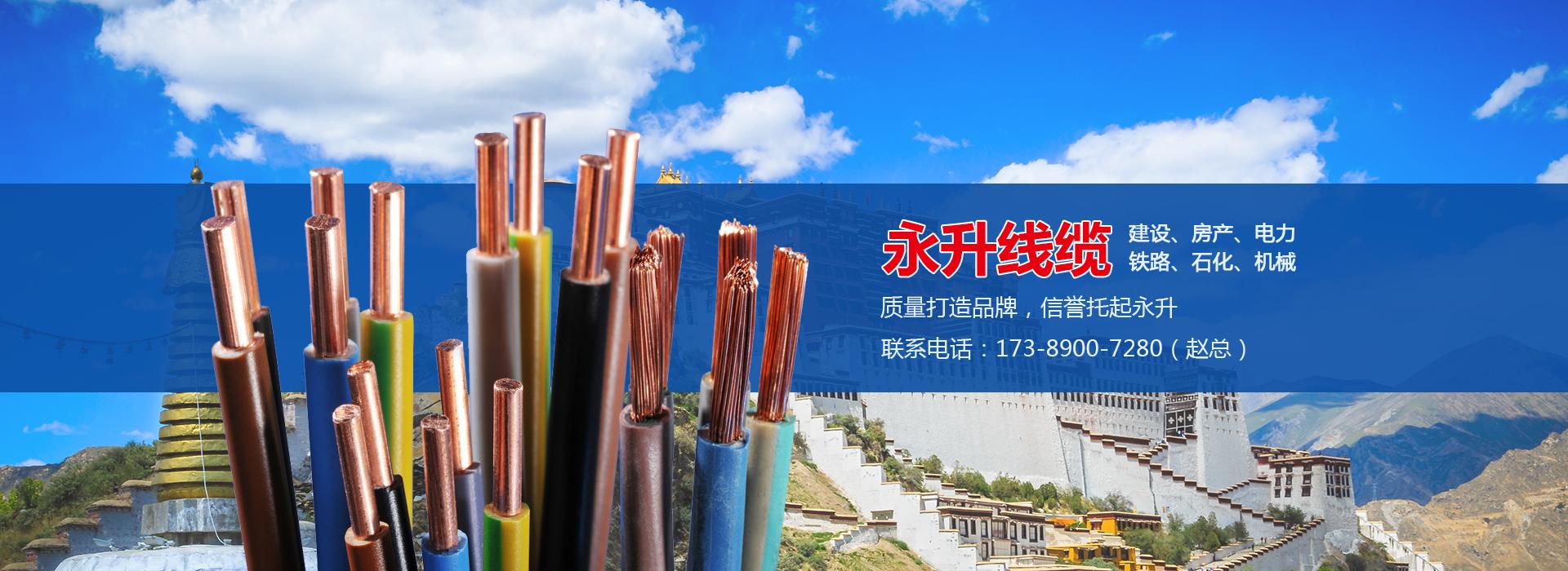 永升線纜西藏銷售部