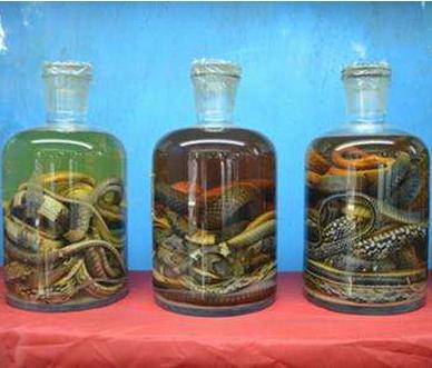 湖北养蛇告诉你蛇酒的主要功效有哪些