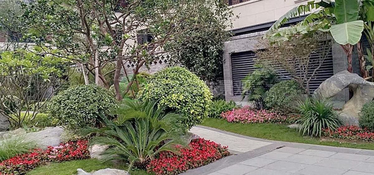 福建别墅花园景观