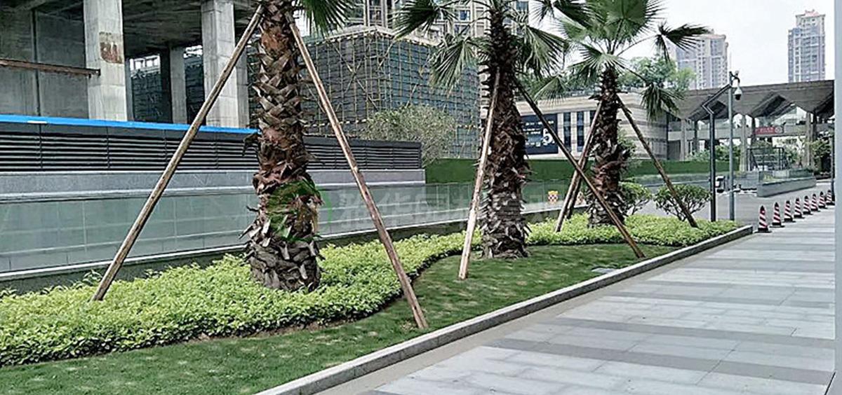 2016钱隆广场景观工程