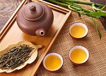 初级茶艺培训
