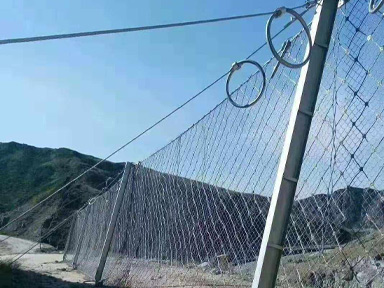 贵州被动边坡防护网