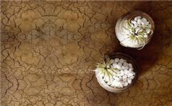 辽宁艺术涂料施工介绍艺术涂料作为一种新型的墙面装饰艺术漆
