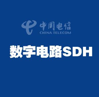 中国电信数字电路SDH