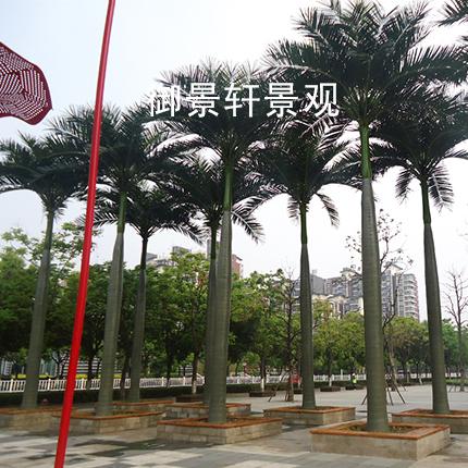 沈阳仿真椰子树的特征和材质
