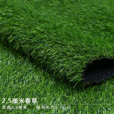 仿真春草草坪