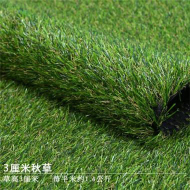 仿真秋草草坪