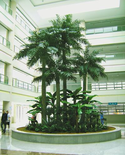 仿真室内椰子树